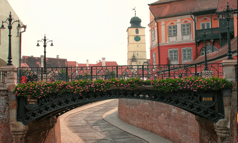 Grupa 1 – ÎNCEPĂTORI – Sibiu